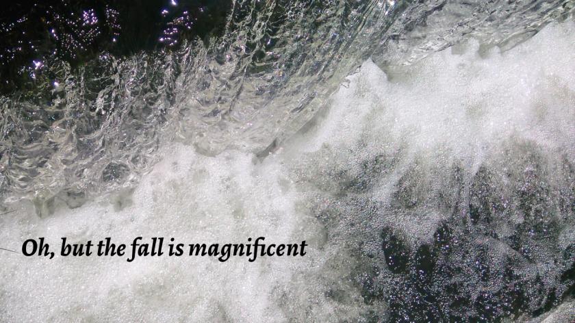 Mag fall final